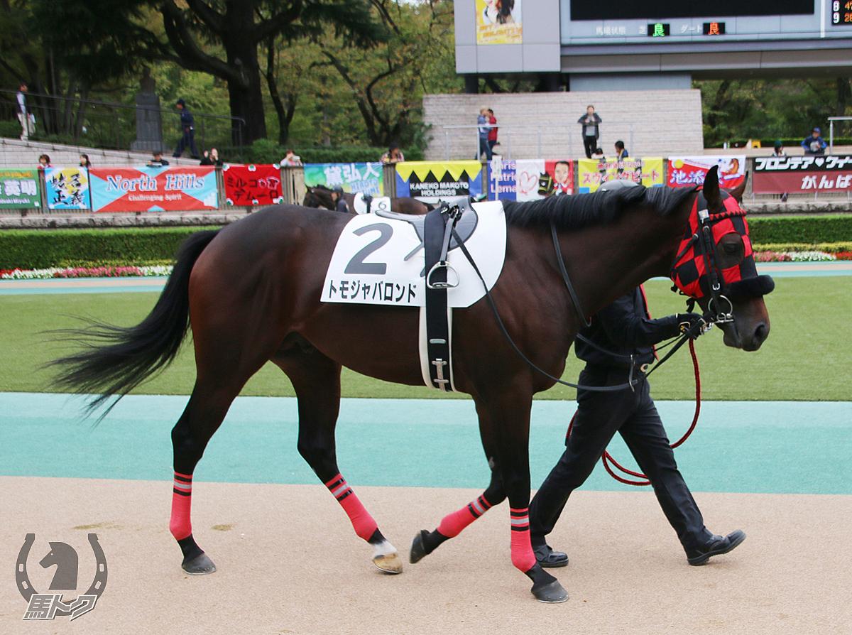 トモジャバロンドの馬体写真