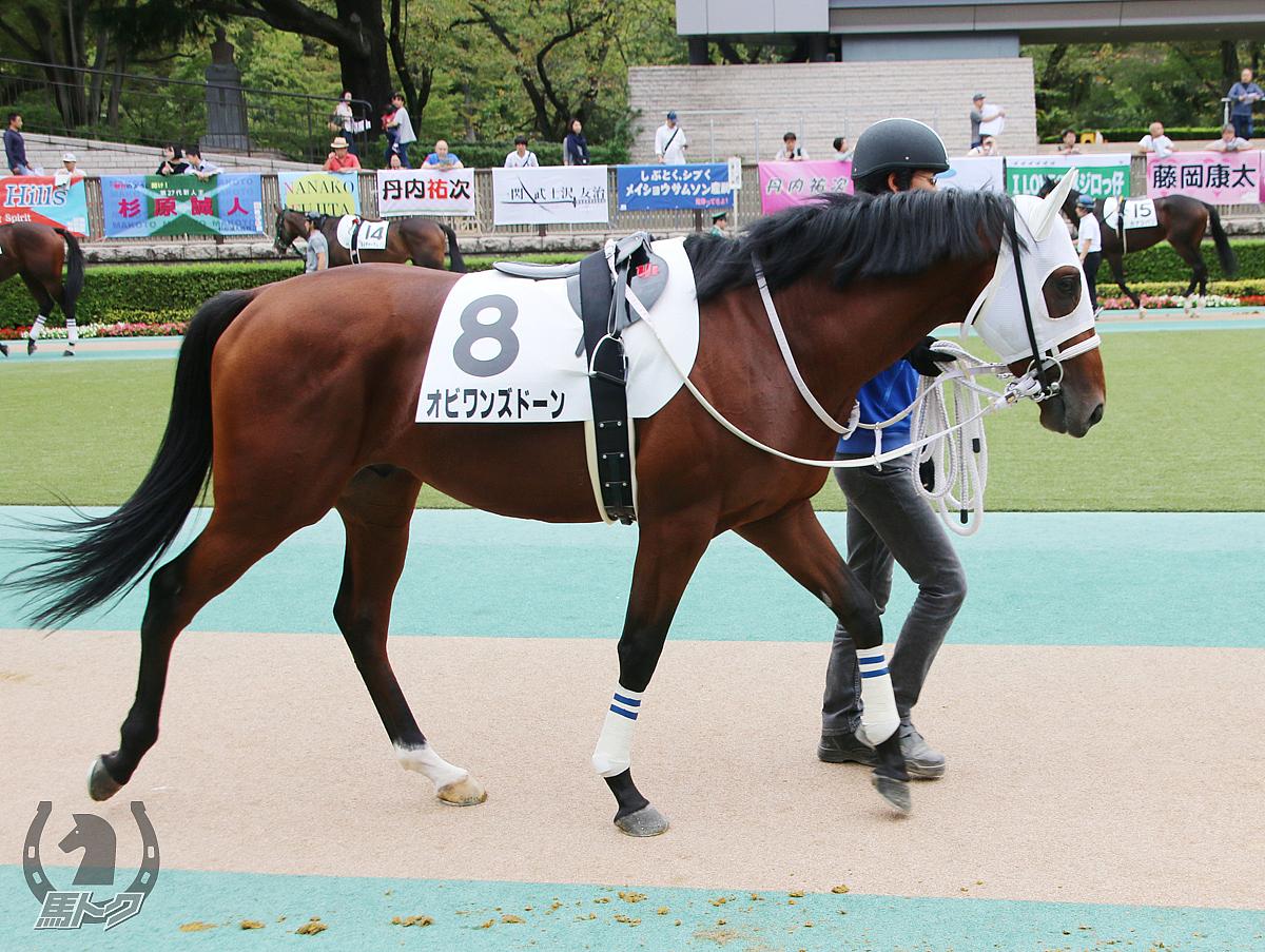 オビワンズドーンの馬体写真