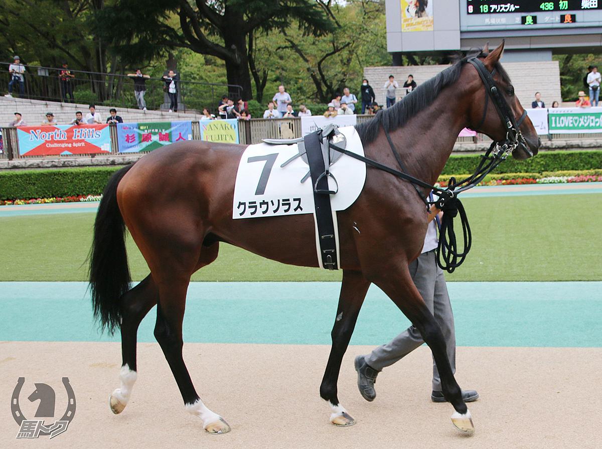 クラウソラスの馬体写真