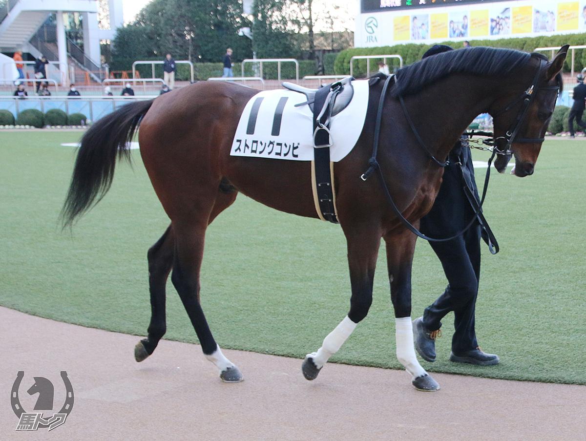 ストロングコンビの馬体写真