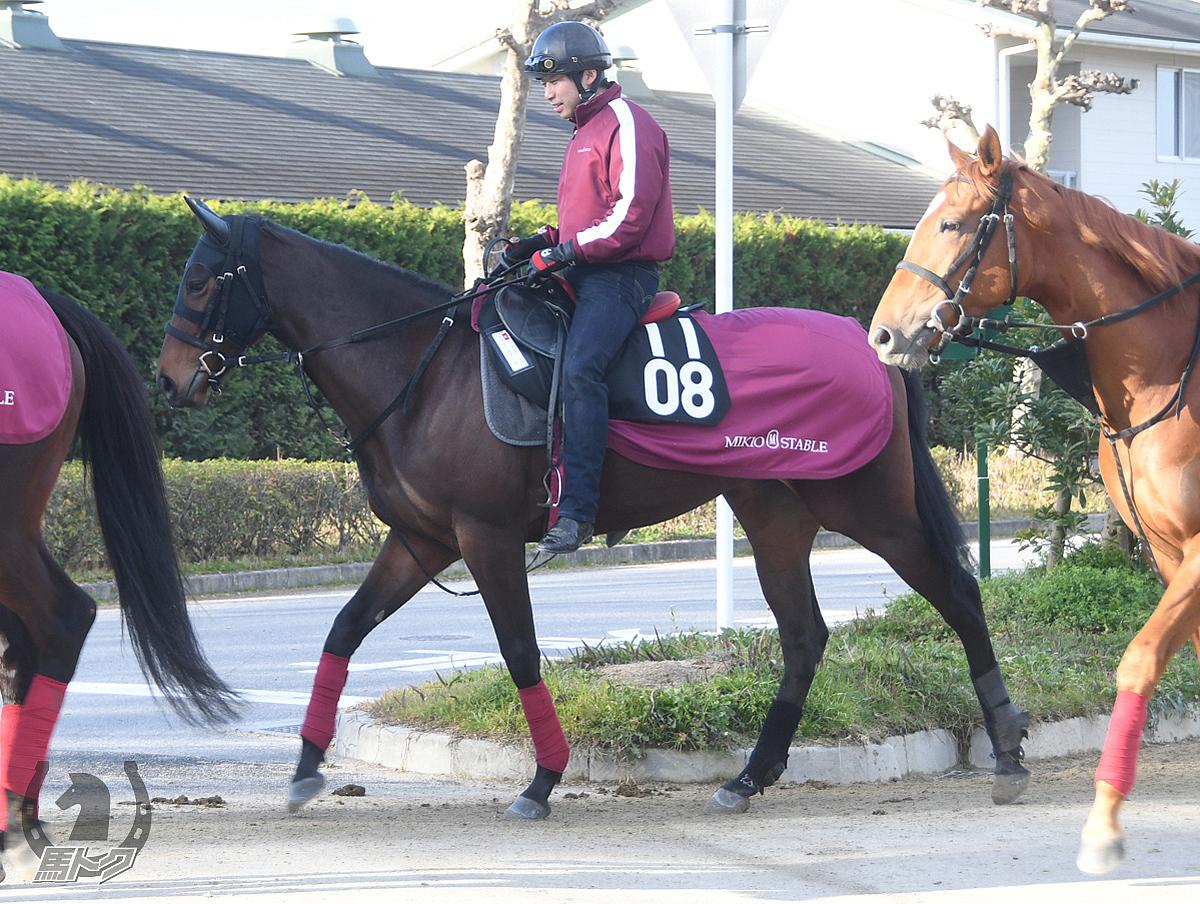 ラブミーチャームの馬体写真