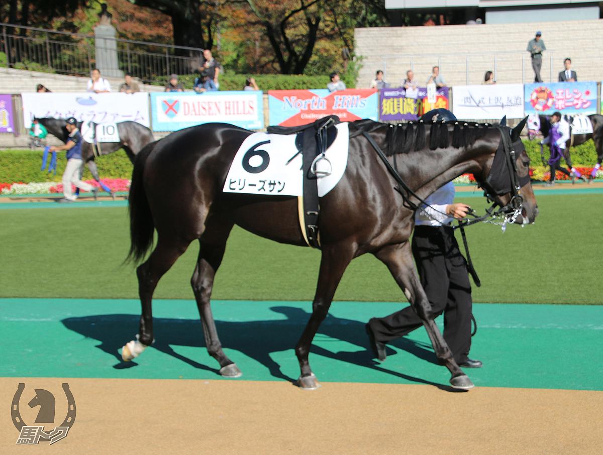 ヒリーズサンの馬体写真