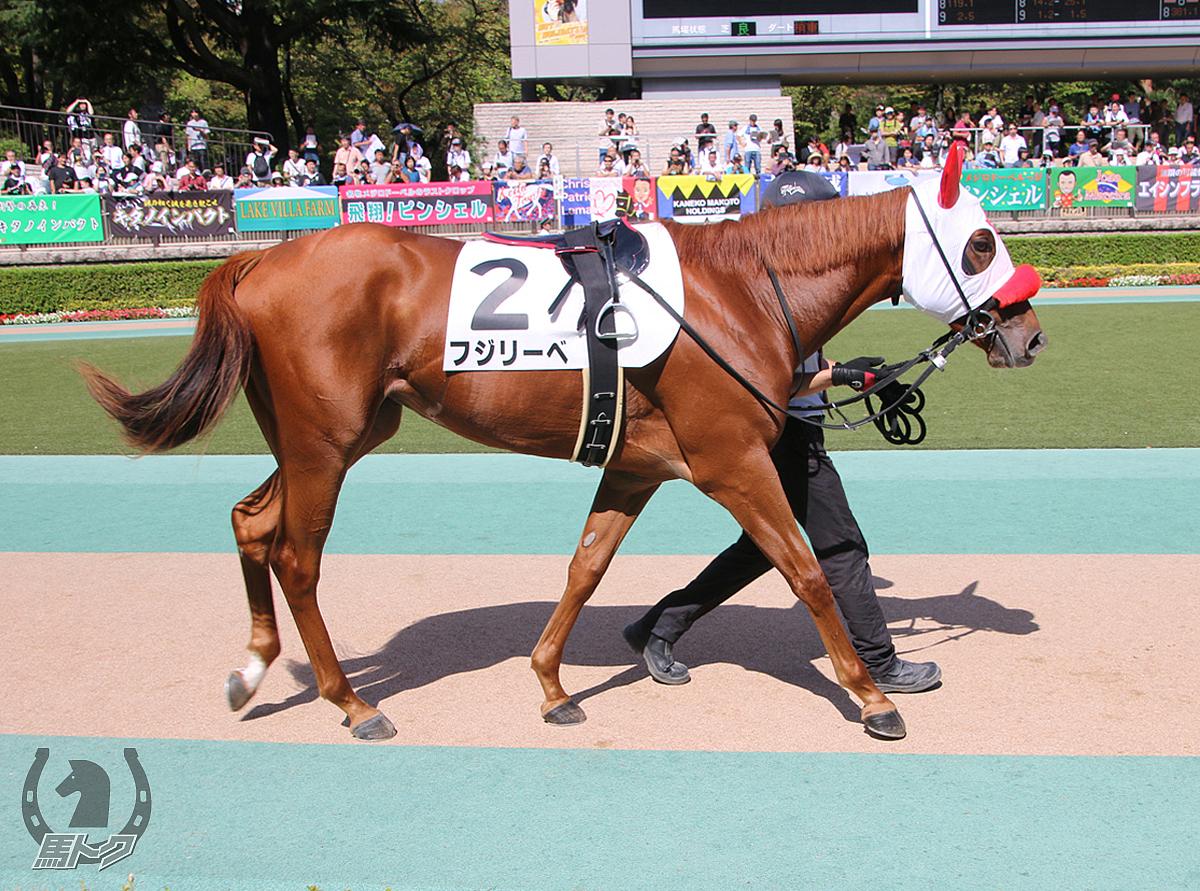 フジリーベの馬体写真