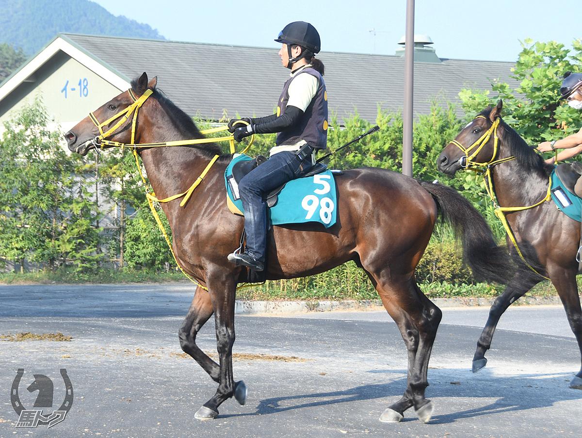 ワールドウォッチの馬体写真