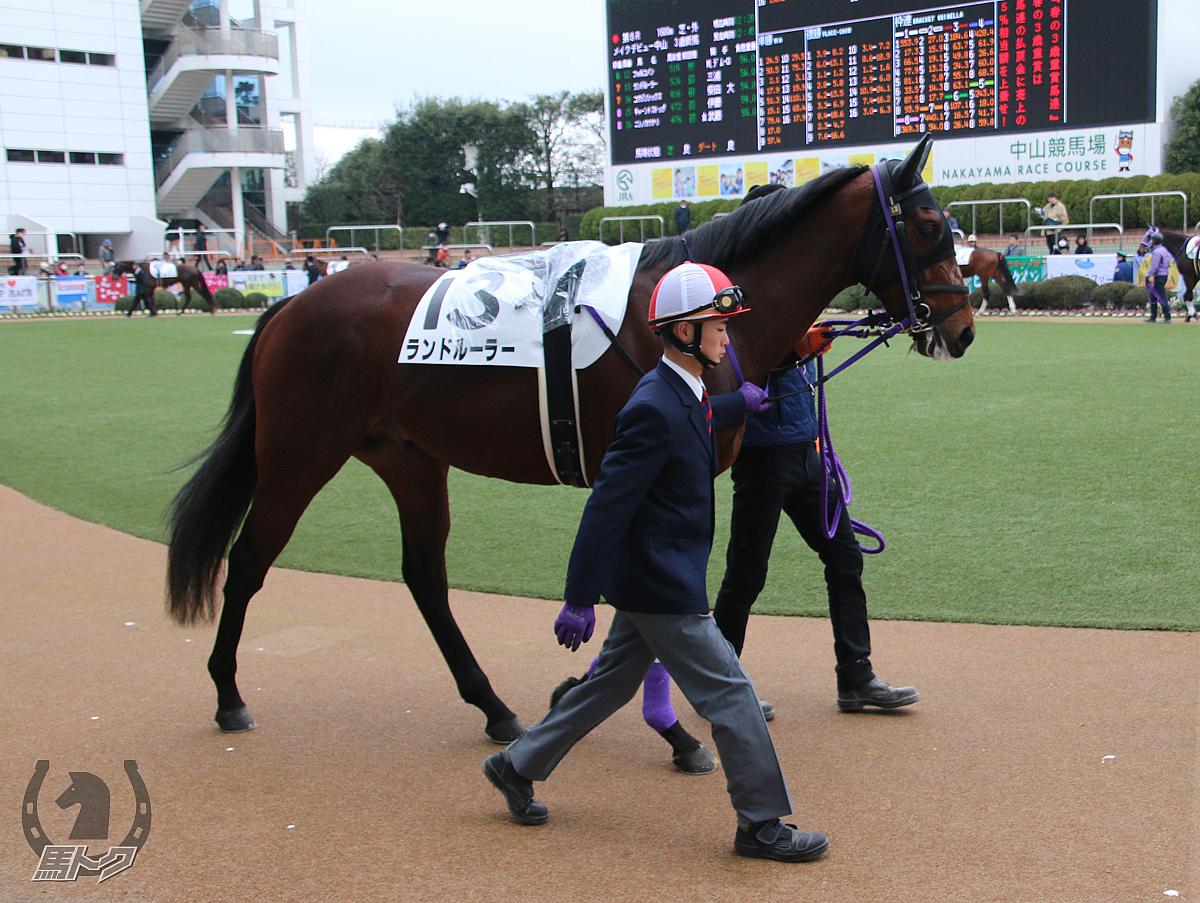 ランドルーラーの馬体写真