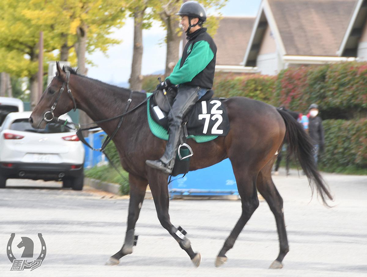 エヴァキュアンの馬体写真