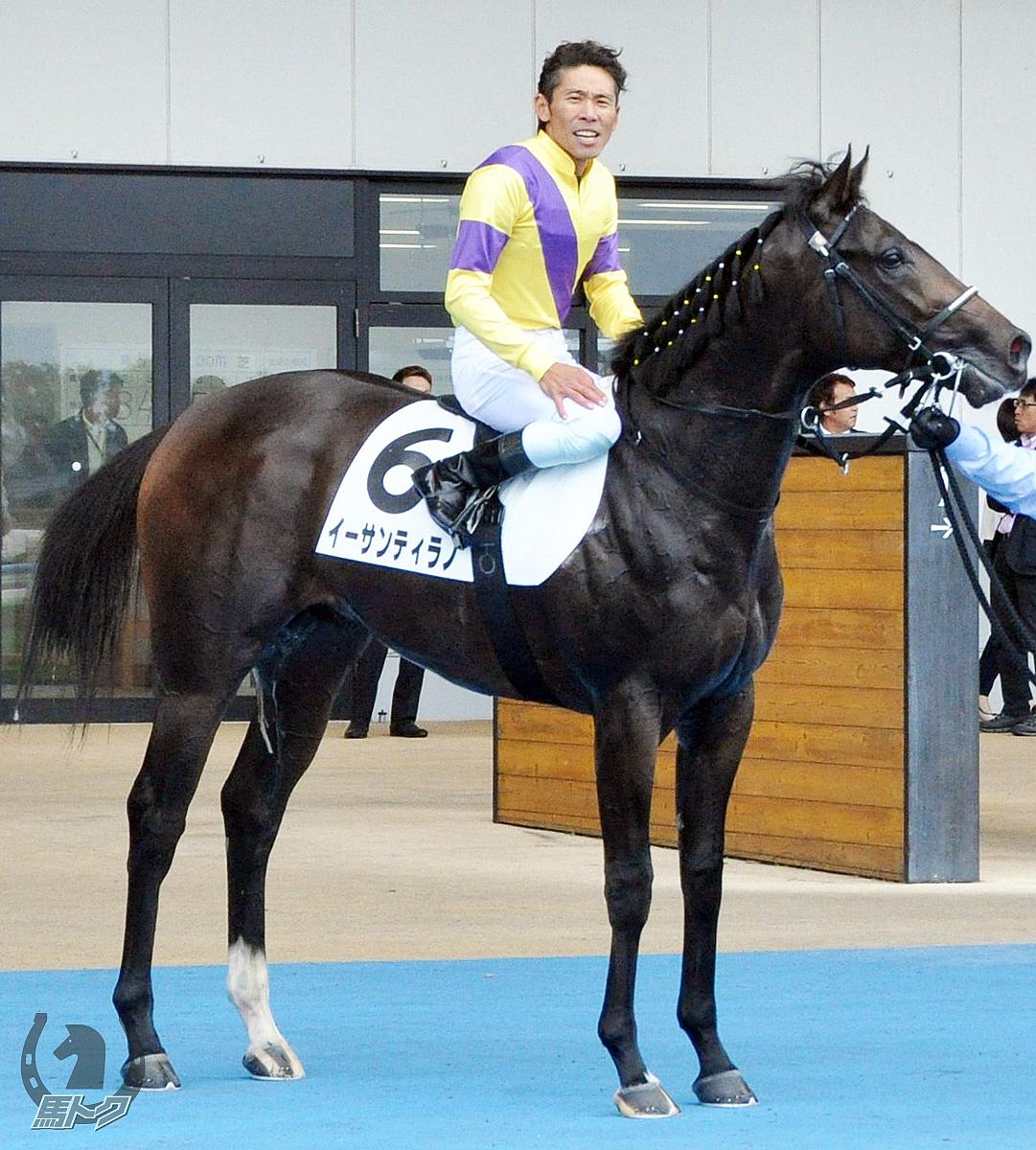 イーサンティラノの馬体写真