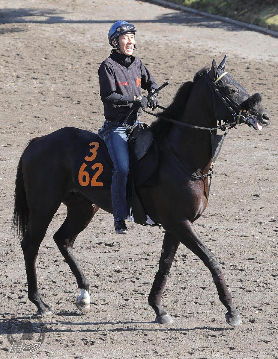 グランチェイサーの馬体写真