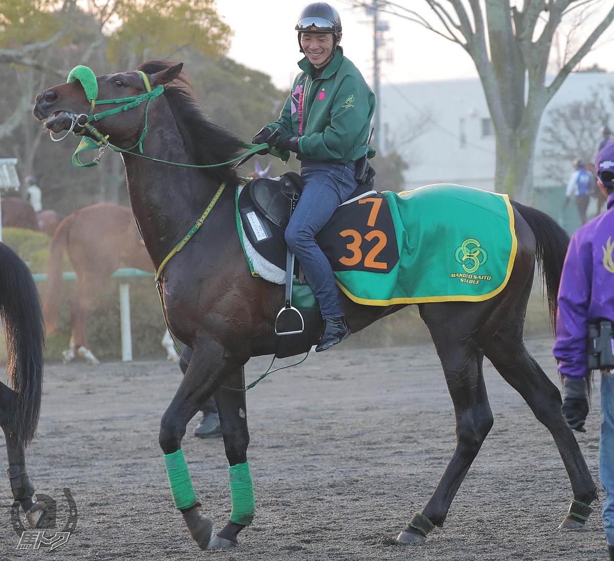 セイウンパワフルの馬体写真