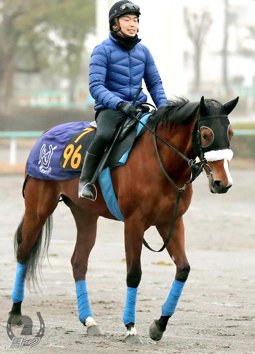 ダイワクンナナの馬体写真