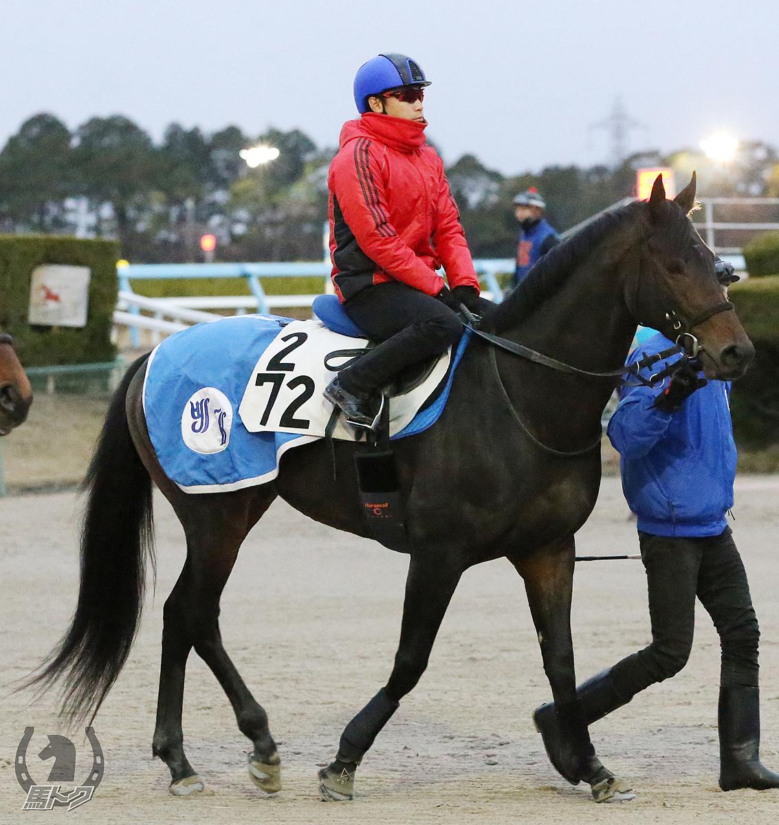 ヴェルトライゼンデの馬体写真