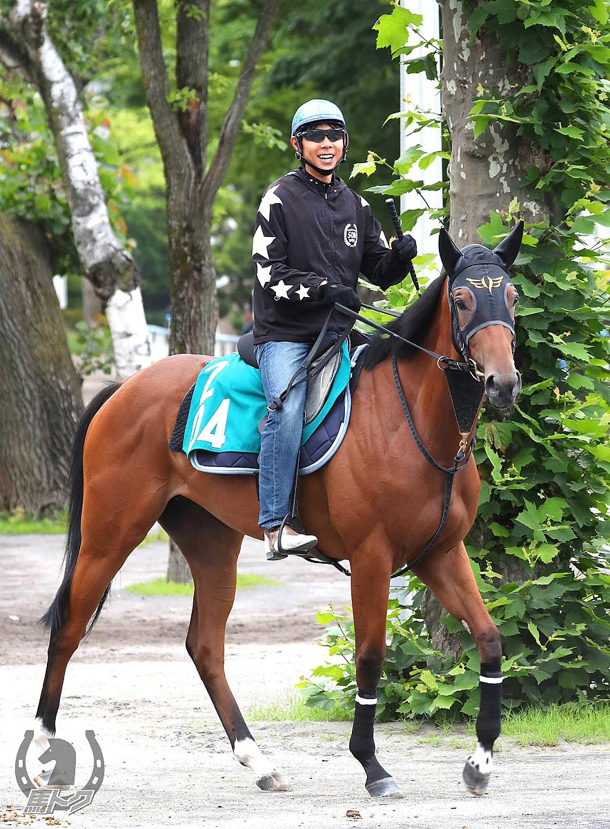 レッドヴェイパーの馬体写真