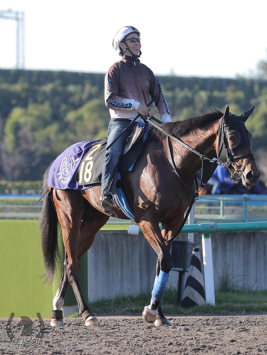 オムニプレゼンスの馬体写真