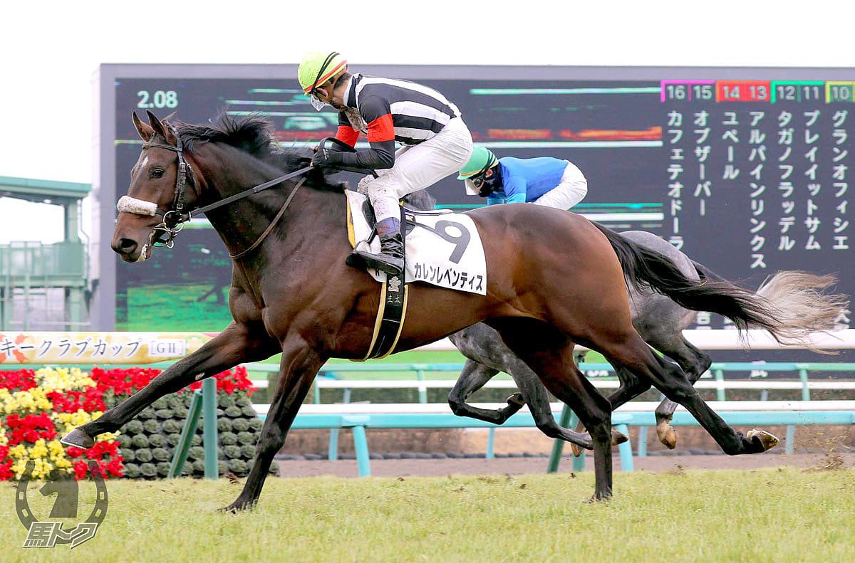 カレンレベンティスの馬体写真