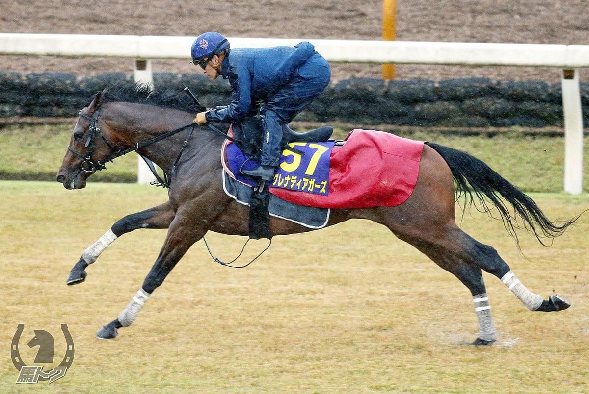 グレナディアガーズの馬体写真