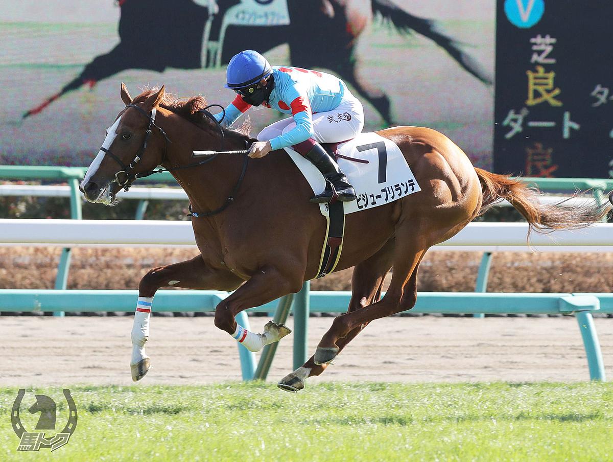 ビジューブリランテの馬体写真