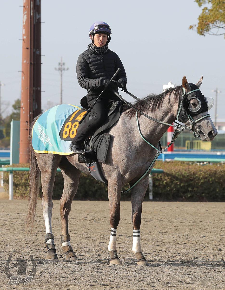 リフレイムの馬体写真