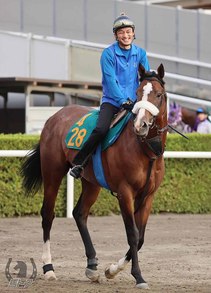 レッドランメルトの馬体写真